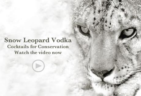 cocktails-conservation